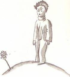 o principezinho e a sua flor de quatro espinhos